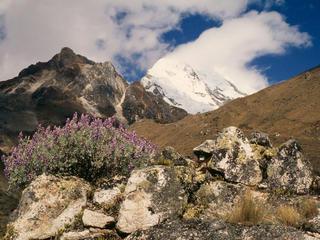 Chopicalqui mountain