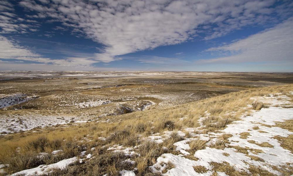 prairie in winter