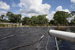 The water treatment plant at Cervecería Hondureña, where Coca-Cola is bottled in San Pedro Sula, Honduras.