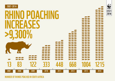 chart of rhinos