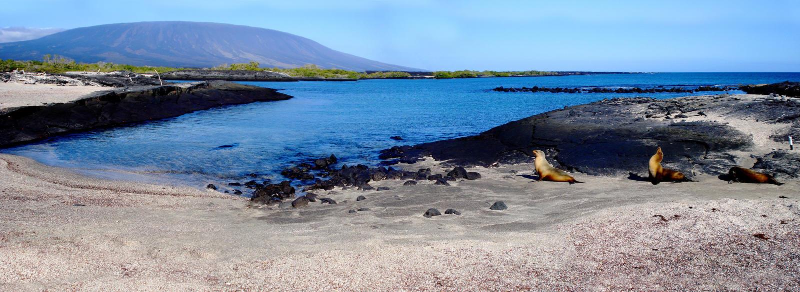 Landscape   galapagos   fernandina   panoramica 2