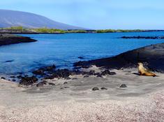 Landscape_-_galapagos_-_fernandina_-_panoramica_2