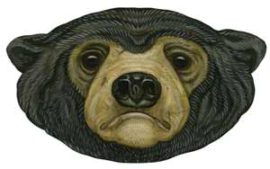 Sun bear illustration