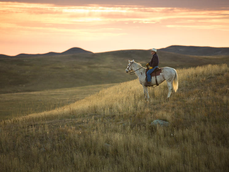 Rancher on his horse looking across the Northern Great Plains.