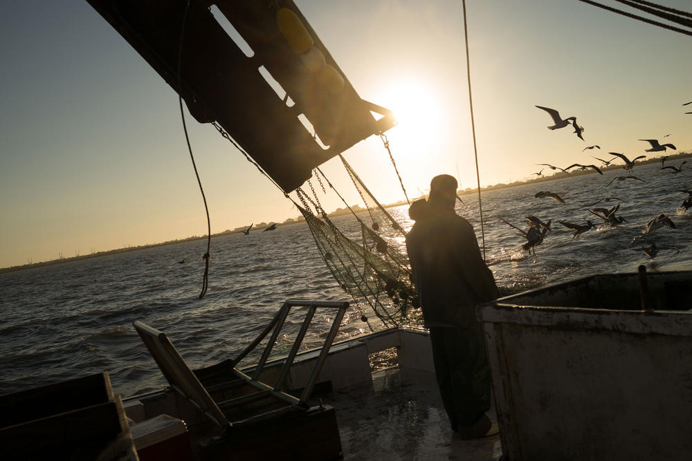 Fisherman in Gulf of Mexico