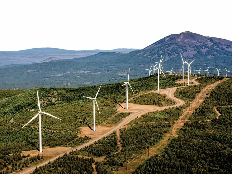 REBA Ushers in a New Day for Renewable Energy