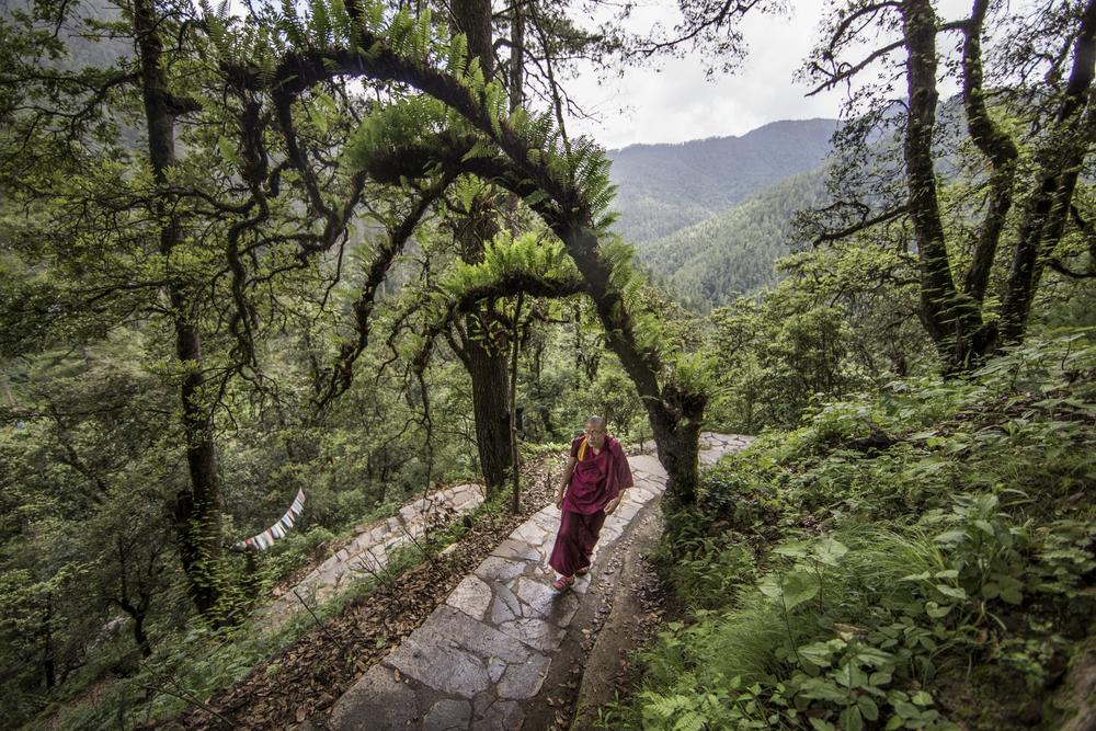 Buddhist monk in Bhutan