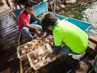 fishing in malaysia