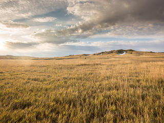 Northern Great Plains