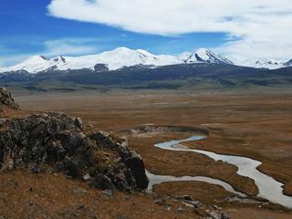 AHM landscape