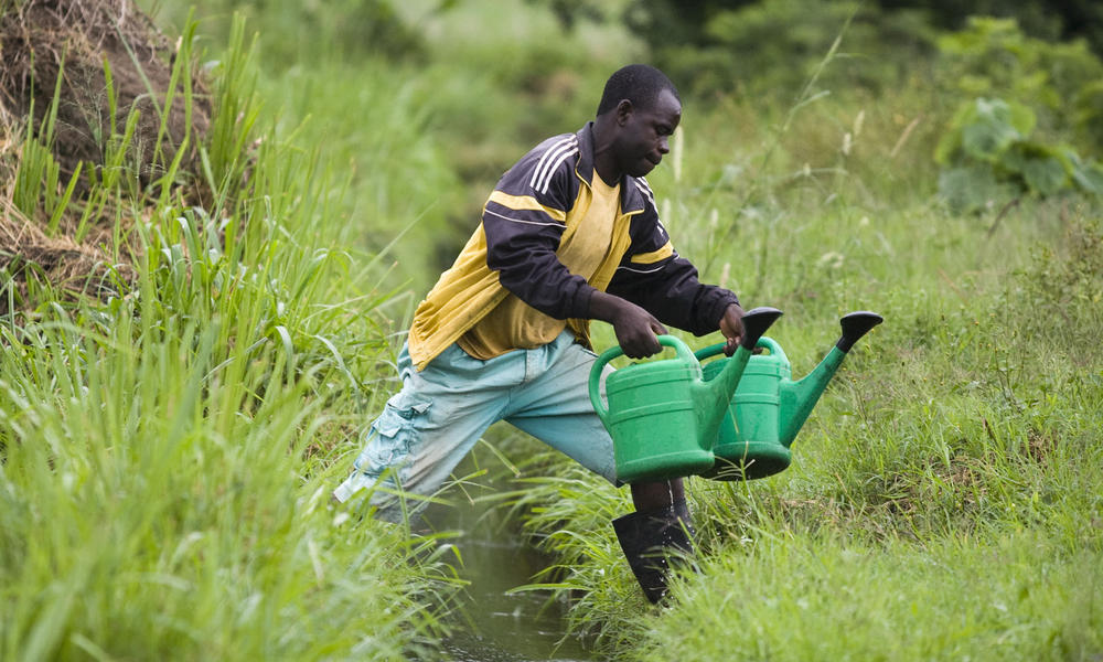 man collecting freshwater