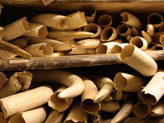 Wildlife_trade_threats_what_wwf_is_doing_small_image_115054