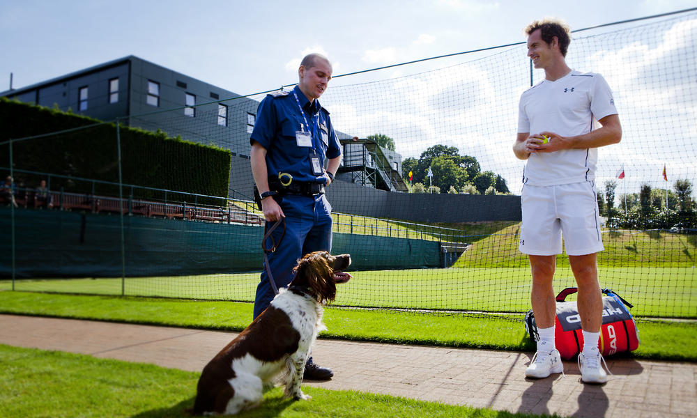 andy murray talks to sniffer dog trainer
