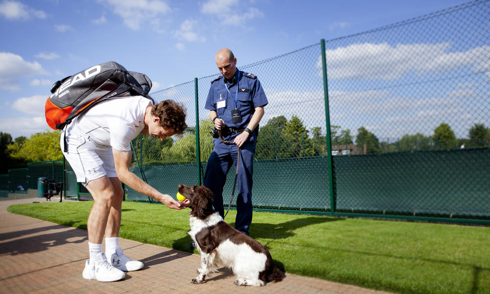 andy murray pets a sniffer dog