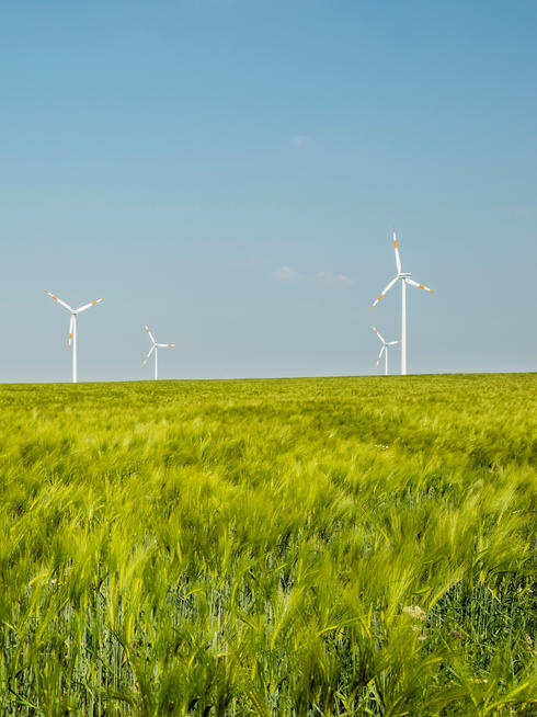 Group of wind turbines, Selfkant, Germany