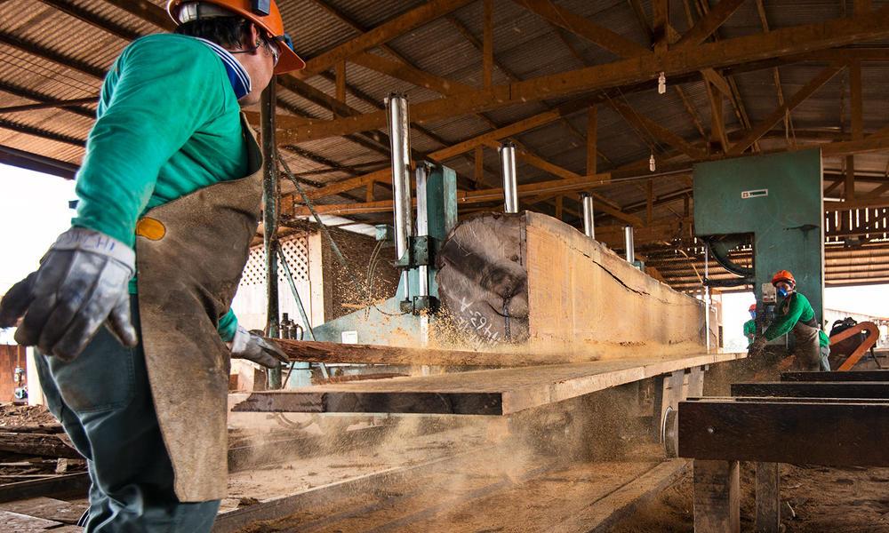 Workers processing wood in Puerto Maldonado