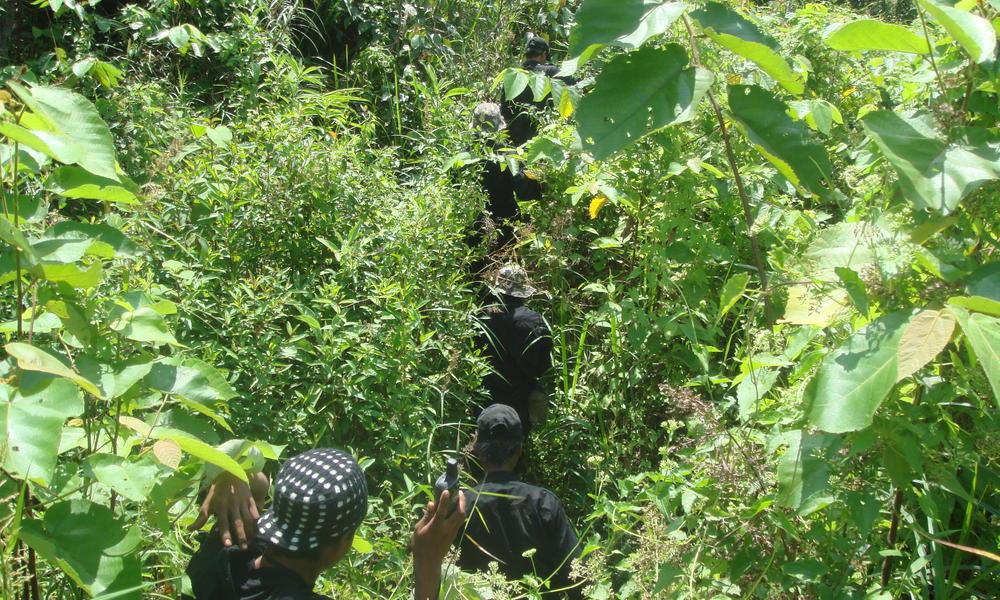 wildlife protection unit in Thirty Hills, Sumatra
