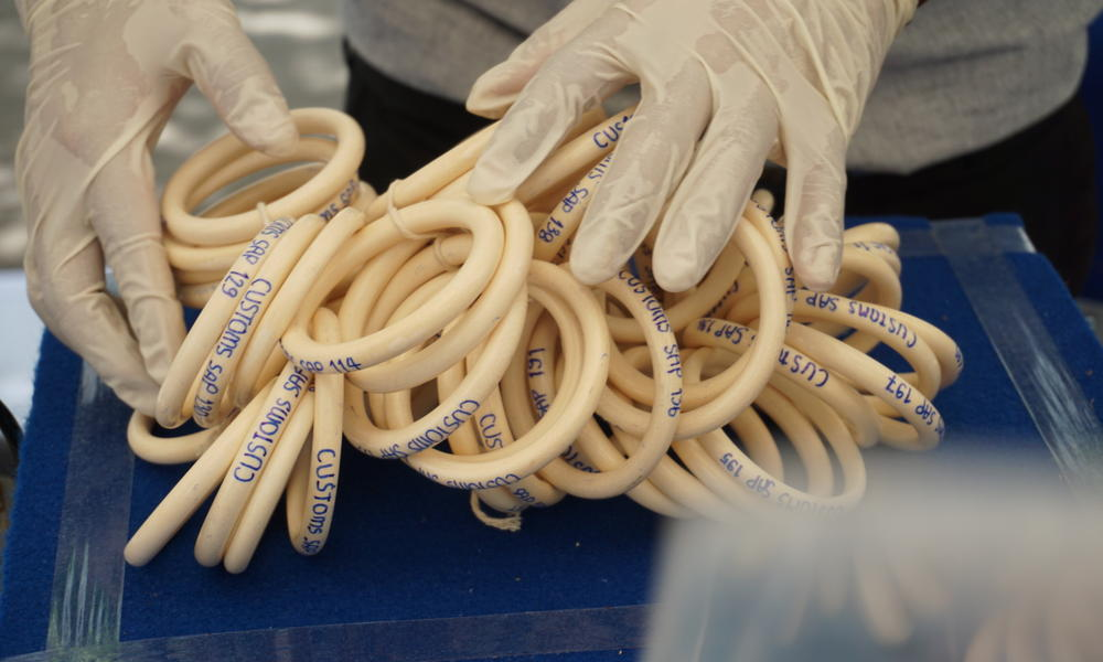 ivory bangles from thailand