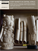 Ivory Markets in Central Africa Brochure