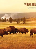 Where the Buffalo Roam Brochure