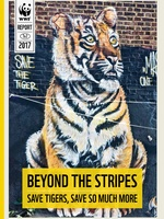 Beyond the stripes: Save tigers, save so much more Brochure