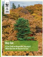 Okay Oak: A Case Study on Responsible Sourcing of White Oak from the Russian Far East Brochure
