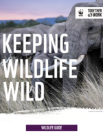 Keeping Wildlife Wild Brochure
