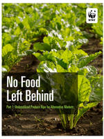 No Food Left Behind, Part 1: Underutilized Produce Ripe for Alternative Markets Brochure