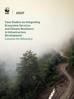 Case Studies on Integrating Ecosystem Services and Climate Resilience in Infrastructure Development: Lessons for Advocacy Brochure