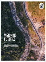 Visioning Futures: Improving Infrastructure Planning to Harness Nature's Benefits in a Warming World (lo-res) Brochure
