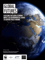 Global Futures: Assessing the global economic impacts of environmental change to support policy-making Brochure