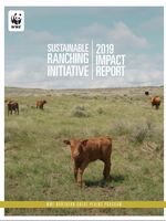 Sustainable Ranching Initiative Impact Report: 2019 Brochure