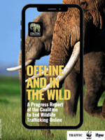 Offline and In the Wild: A Progress Report of the Coalition to End Wildlife Trafficking Online Brochure