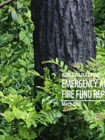 Emergency Amazon Fire Fund Report - March 2020 Brochure