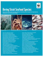 First Page of Bering Strait Seafood Species List