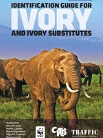 Identification Guide for Ivory and Ivory Substitutes Brochure