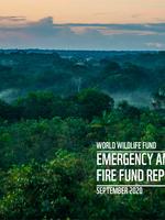 Emergency Amazon Fire Fund Report September 2020 Brochure