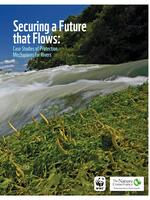 Securing a Future that Flows: Case Studies of Protection Mechanisms for Rivers Brochure