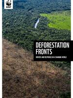 Deforestation Fronts: Drivers and Responses in a Changing World - Full Report Brochure