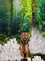 Don't Flush Tiger Forests Brochure