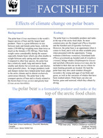 Effects of Climate Change on Polar Bears fact sheet Brochure