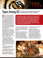 Tigers Among Us Brochure