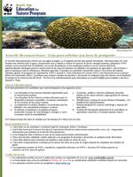 2014 Becas de Postgrado en Arrecife Mesoamericano Brochure