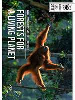 WWF's Living Forest Report: Chapter 1 Brochure