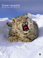 Snow Leopard: WWF Wildlife and Climate Change Series Brochure