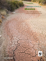 In Pursuit of Prosperity: Mexico Chapter Summary Brochure