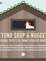 Beyond Soup and Nuggets: The Global Effect of China's Poultry Industry Brochure