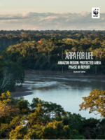 ARPA For Life: Amazon Region Protected Area Phase III Report Brochure