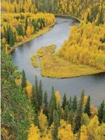 Free Flowing Rivers Fact Sheet Brochure