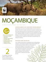 Portuguese Mozambique Guidelines 2017 Brochure